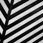 Lines, texture, stripes desktop background