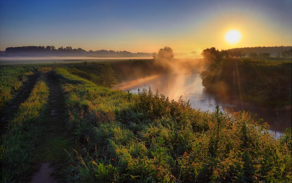Ukraine, sun, tetraev, nature, trees, grass, river, polesie, morning, dawn, fog, road