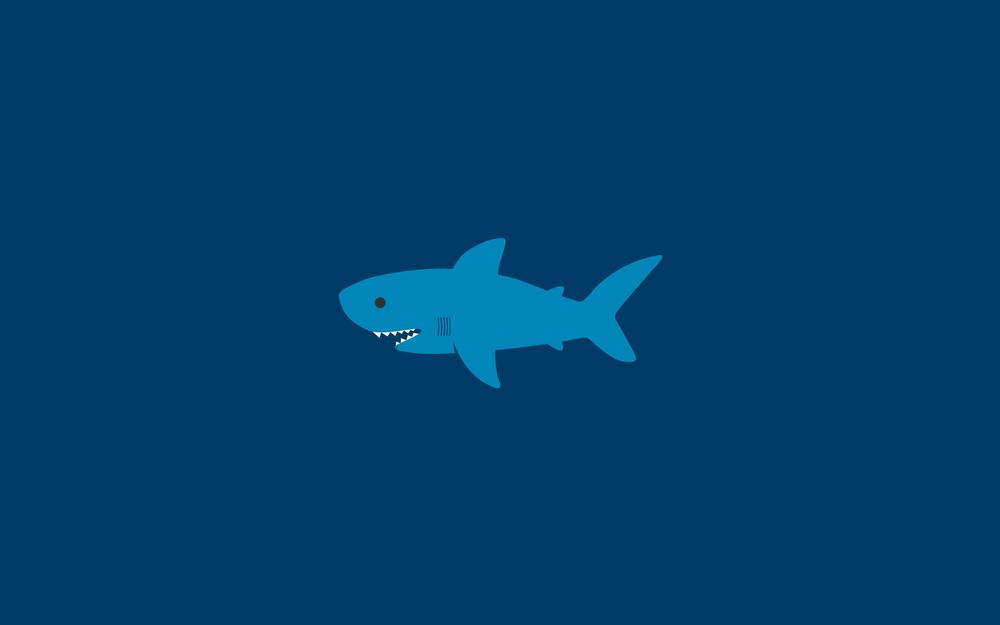 Water, shark, shark, ocean, minimalism, sea, creative