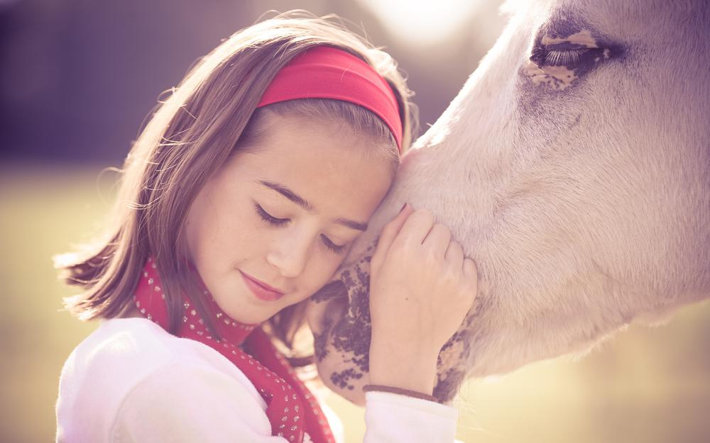 Love, care, gentle, white beautiful horse, attachment, girl