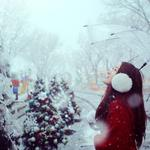 Enthusiastic winter view wallpaper