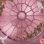 Rose garden, roses, flowers, flowers, gothic architecture, gothic architecture, window, pigeons, gothic, girlands, gothic style, dove, roses, garlands, pigeon, pink garden