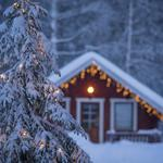 Country house, cottage, christmas tree
