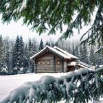 House in snowy forest, snow, winter