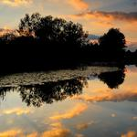 Sunset of the sun, river, trees