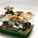Whole world in a cage