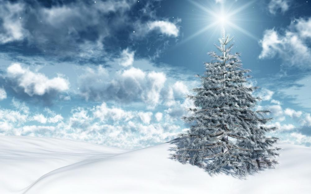 Christmas tree, snow, sun