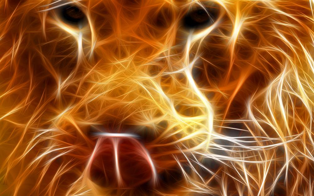 Lion, on fire, from fire