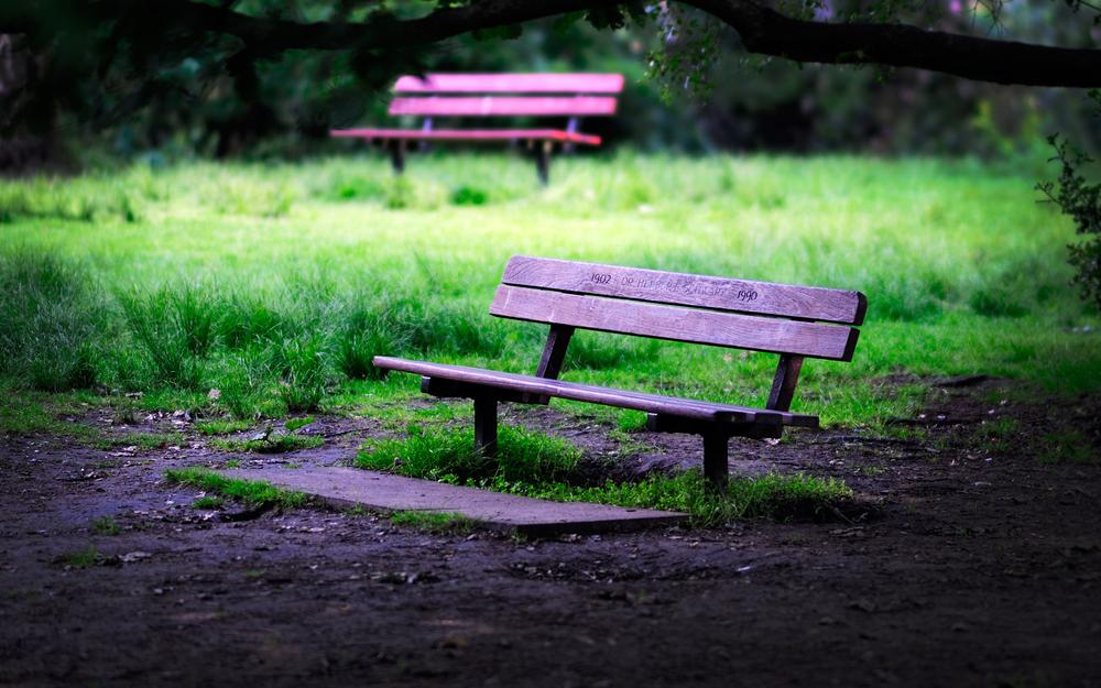 Grass, shop, benches, greens, mood, benches, bench