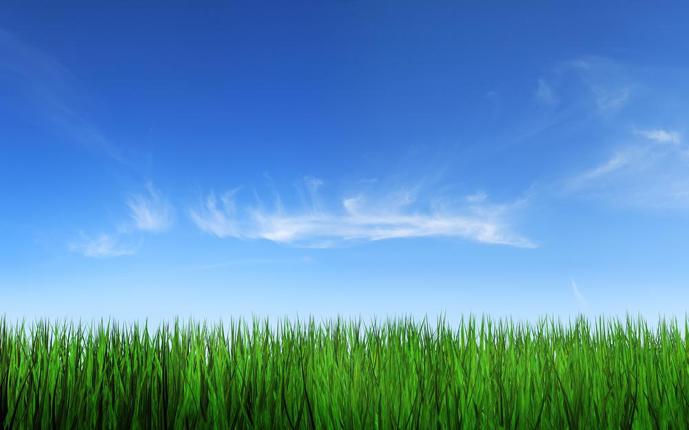 Clouds, grass, sky, nature, photo, background, landscapes