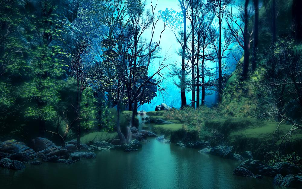 Trees, pond, forest, water