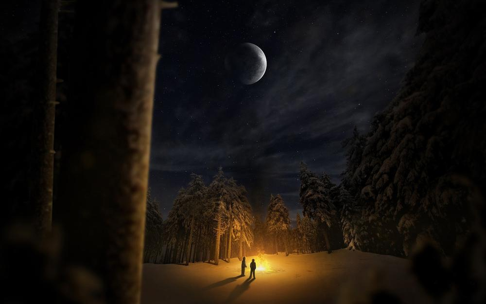 Night, forest3d, moon