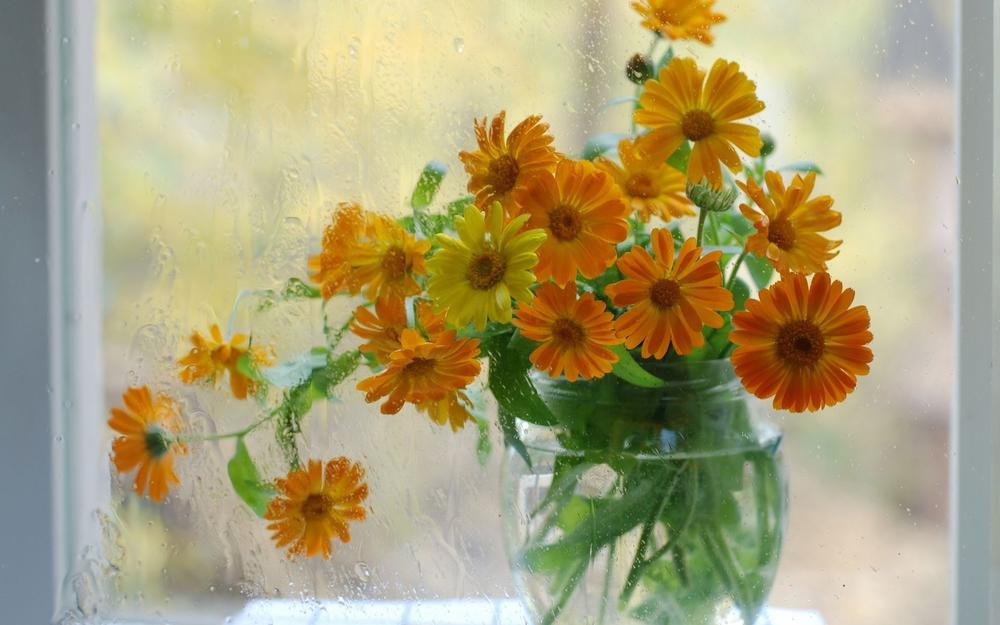 Flowers on the window in a vase