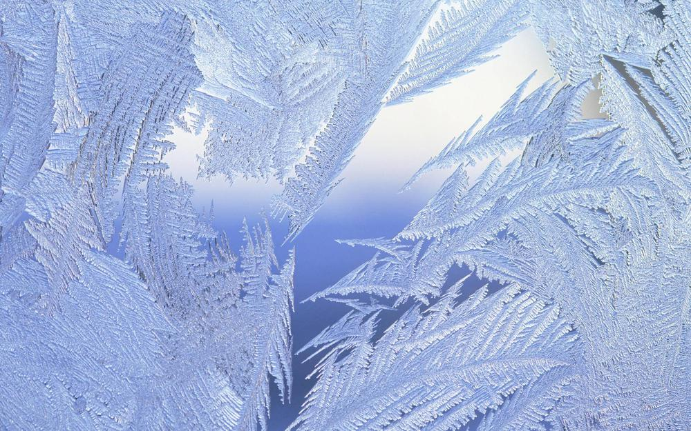 Winter, surface, frost