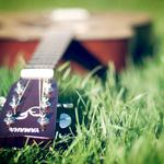 Guitar on the grass
