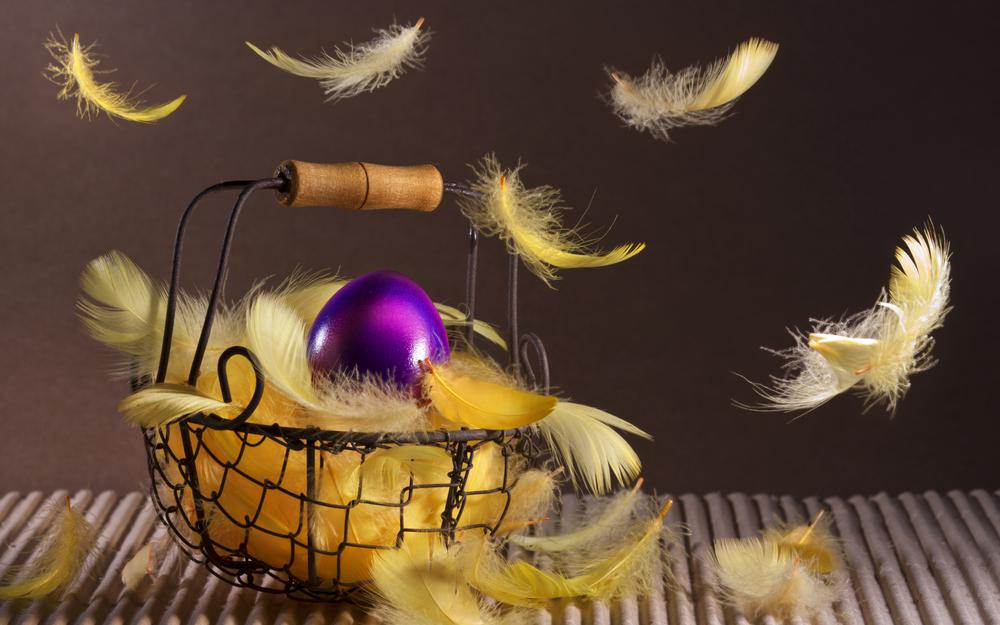 Feathers, basket, easter