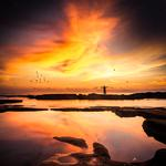 Freedom, sunset, loneliness, silhouette