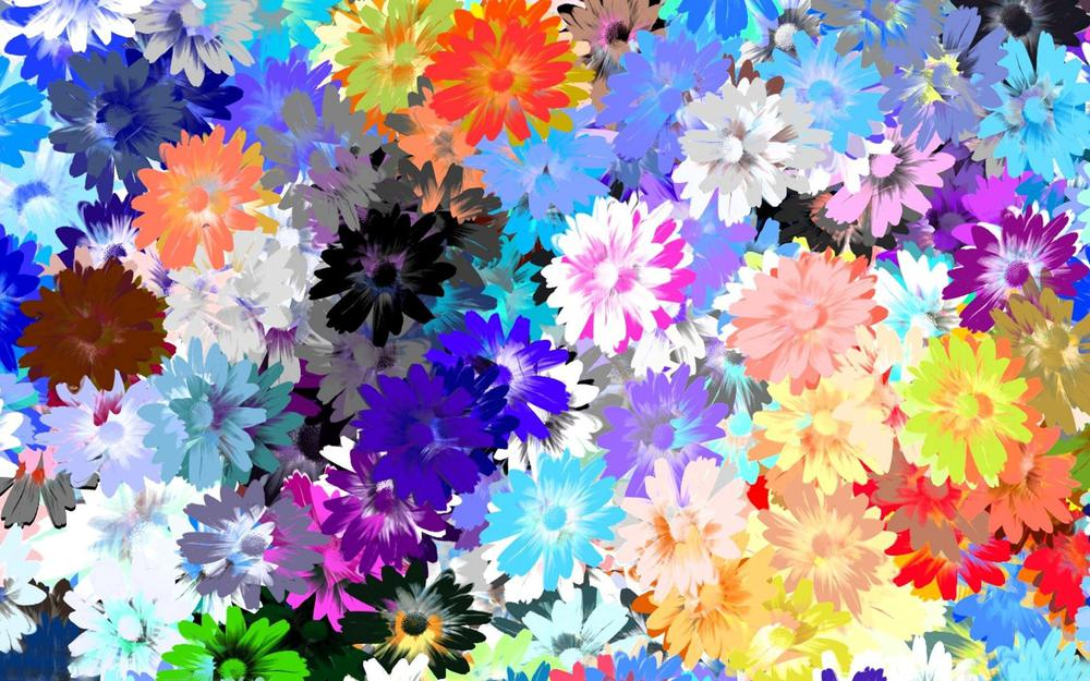 Colorful, flowers, drawing