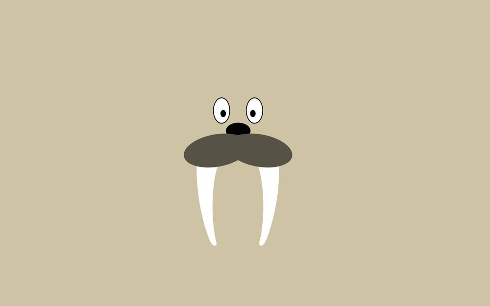Eyes, nose, style, walrus, beeans, nose, tusks