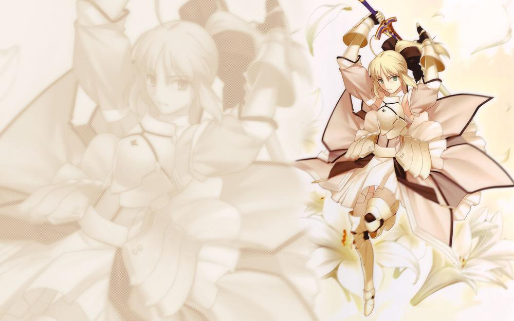 Series,saber,saber lily,fate/unlimited codes,artoria pendragon,fate/stay night