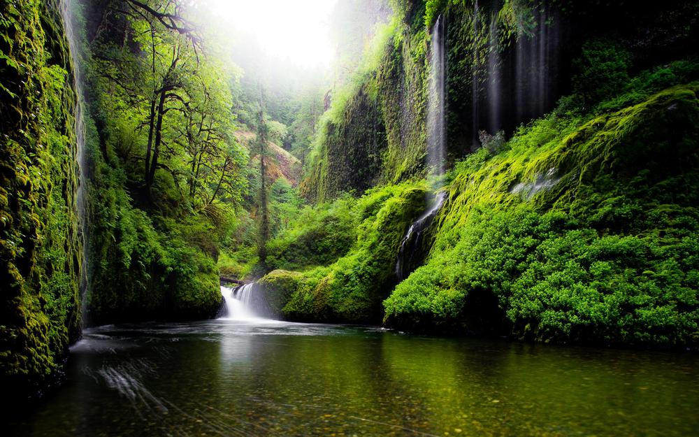 Usa, greens, spring, nature, leaves, river, oregon, waterfalls, water, trees
