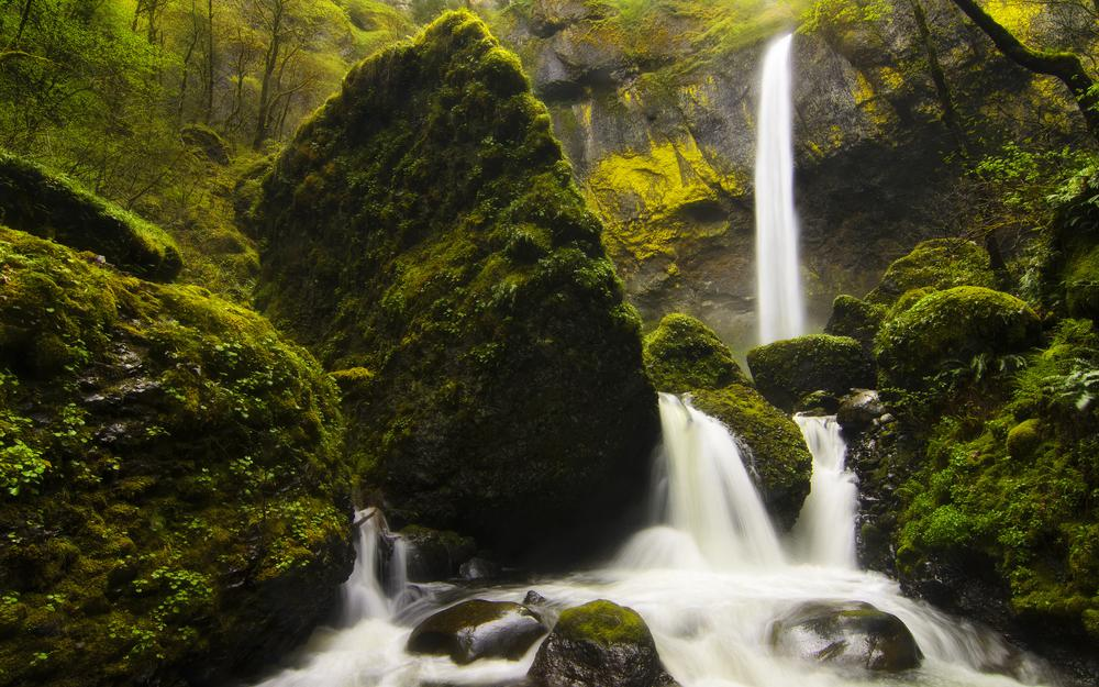 River, forest, waterfall, moss, grass, stones, nature