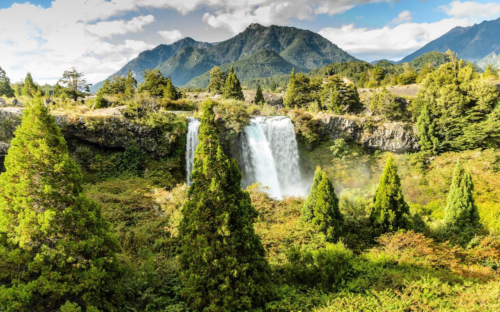 Trees, chile, mountains, congillo national park, truful-truful waterfall, conguillio national park, corpoul-corpoil waterfall, chile
