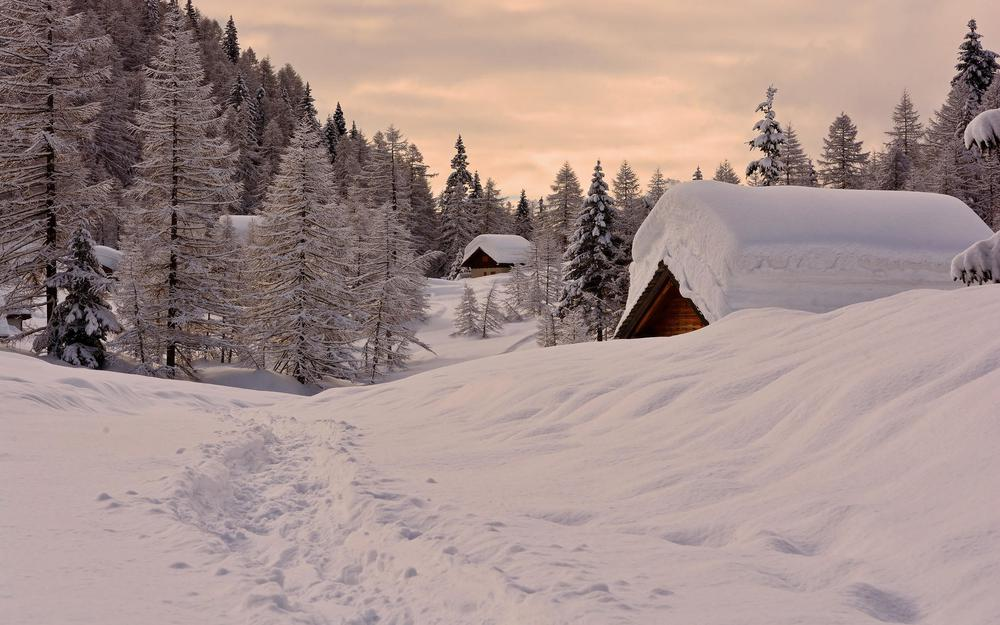 Forest, winter, houses, snow